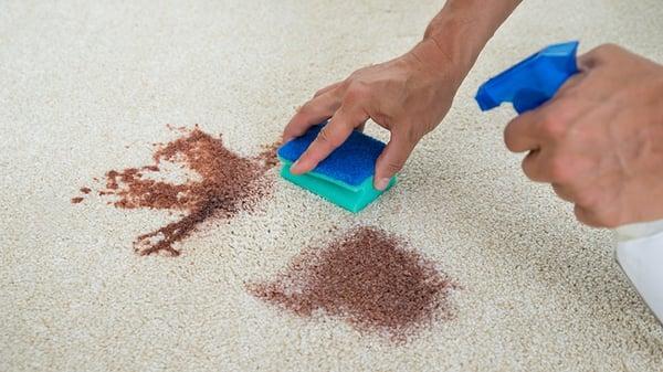 Démonstration pour nettoyer des taches sur votre moquette